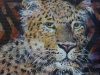 Leopardportræt 20x2