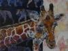 Giraffa Carmelopardalis 30x30x4. SOLGT